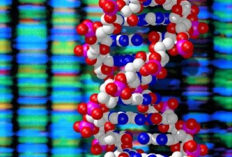 Image of DNA double helix and sequenced data. Image by Wellcome Images (Creative commons)
